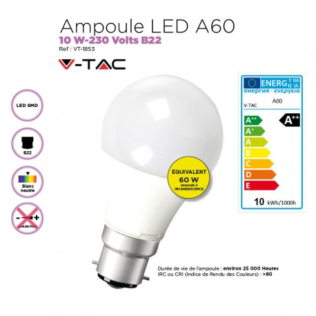 Ampoule LED 10W standard A60/B22-220 Volts